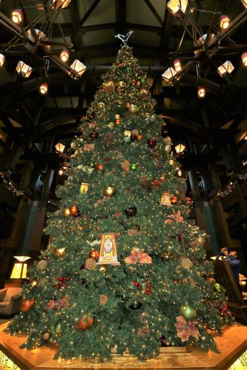 Christmas Christmas Decoration Christmas Tree Christmas Ornament Disneyland California Adventure Grand Californian Hotel