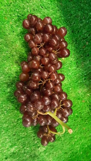 Fresh Australia Champagne Grape Grape Champagne Small Red Healthy Food Healthy Diet & Fitness Young Healthy Eating Photographer Beautiful Nature Naturelovers Friuts