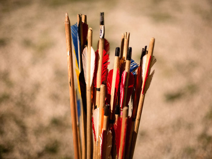Close-up Multi Colored Choice No People Variation Focus On Foreground Still Life Art And Craft Sport Writing Instrument Arrow - Bow And Arrow Large Group Of Objects Archery Pencil Day Craft Wood - Material Colored Pencil Creativity Collection Art And Craft Equipment