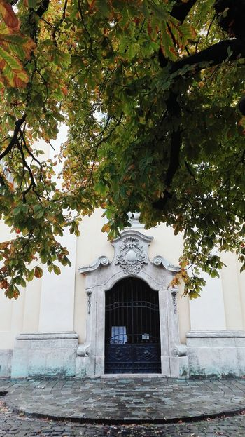 Tree No People Built Structure Day Outdoors Sky Backgrounds Budapest Budapest, Hungary Autumn Autumn Leaves Autumn Colors Beauty In Nature Church Buildings Church