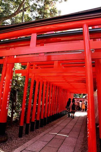 鳥居 犬山 鳥居 Architecture Red Built Structure Day Lifestyles