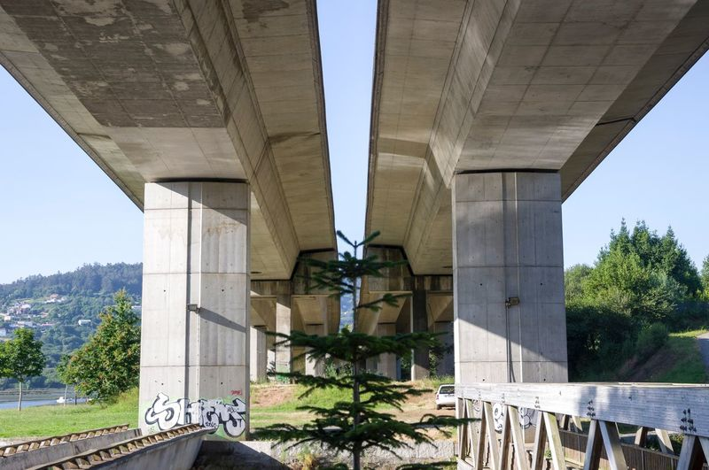 Architectural Column Architecture Autopista 9 De Julio Sur Bridge Bridge - Man Made Structure Built Structure Clear Sky Coruña Engineering Galicia Long Low Angle View No People Outdoors Paseo Maritimo Pilares Pontedeume Puente Supported Transportation Tree árbol First Eyeem Photo