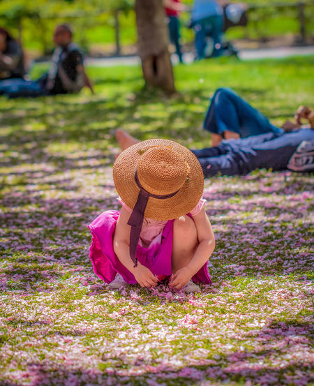 A young girl throws cherry blossom petals in the air at the Brooklyn Botanical Garden. Beauty In Nature Brooklyn Botanical Garden Cherry Blossoms Child Childhood Field Focus On Foreground Grass Hat Innocence Nature Outdoors Petal Real People Sitting Sun Hat Young Girl