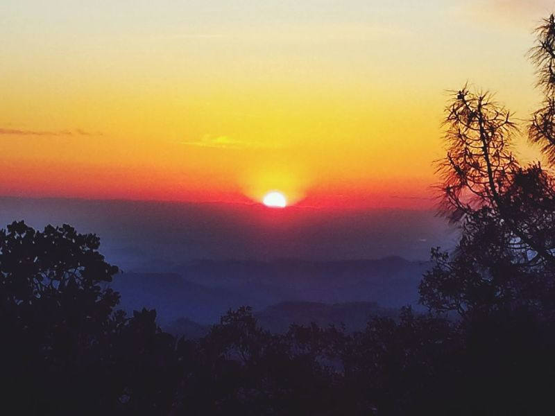 40° Pocket Of Sunshine Pretty Colors Out Of The Fog Out Of The City Out My Back Door Sunset Nature Tranquility Sky