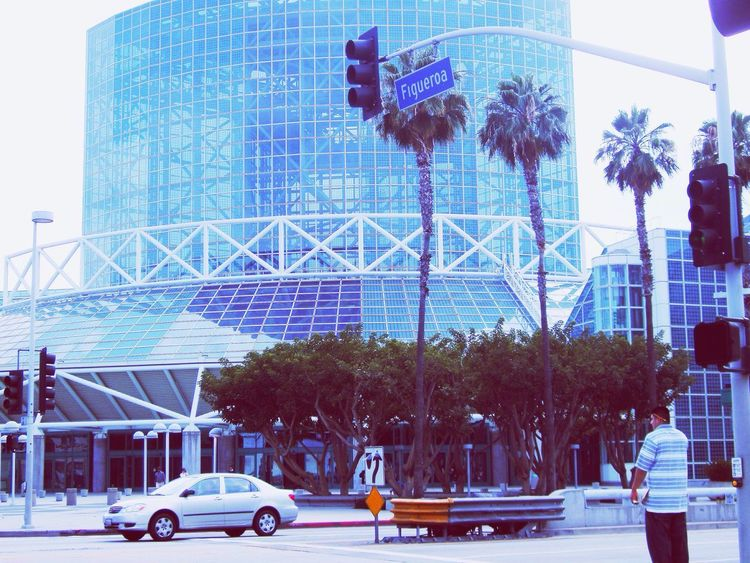 LA Convention Centre The Way Forward The Week on EyeEm This Week On Eyeem Done That. Been There. EyeEmNewHere EyeEm Selects EyeEm Convention Center Conventioncenter California Hollywood California Los Angeles Downtown Hollywood Los Angeles, California La Tree Car Skyscraper Building Exterior Architecture City Built Structure Sky Transportation Outdoors Cityscape Palm Tree Travel Destinations Day