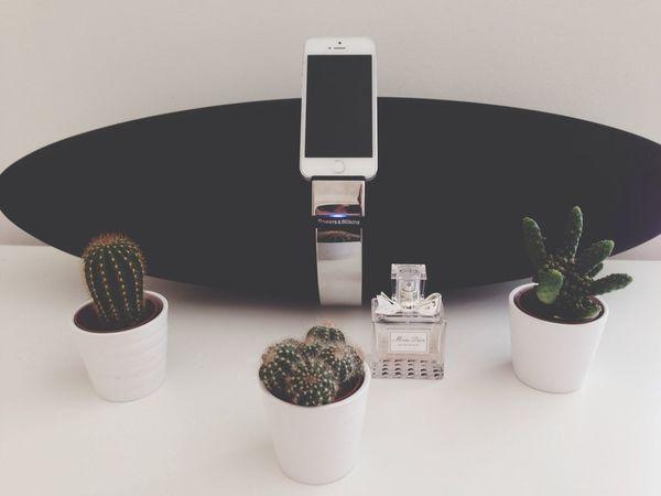 ? IPhone Cactuses I Love Cactus Fashion