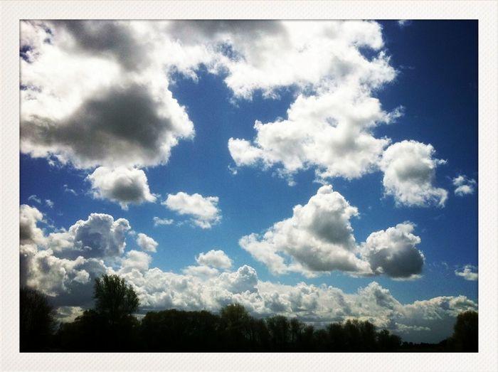 Clouds And Sky AMPt_community NEM Submissions NEM Clouds