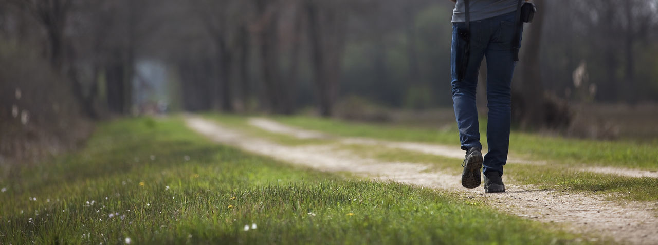 Low section of man walking on grass
