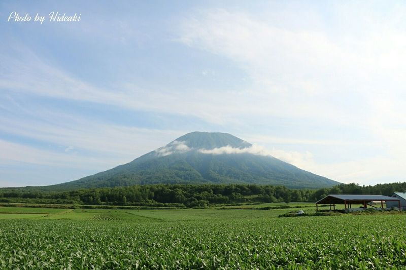 ニセコ 羊蹄山 蝦夷富士 青空 山