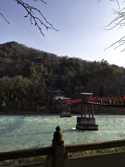 Buddhism Buddhist Buddhist Temple Chinese Clear Sky History Lake Leisure Activity Lifestyles Men Mountain Nature Person Railing Rear View River Scenics Sitting Tourist Tranquil Scene Tranquility Tree Water