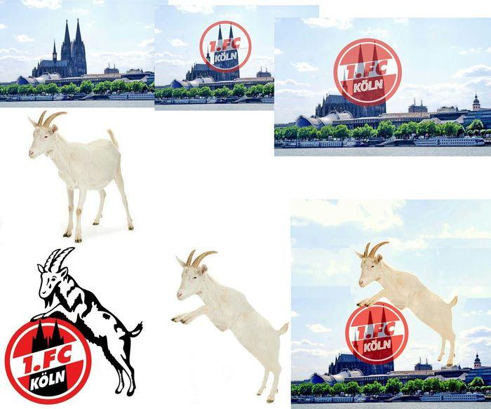 Custom FC-Logo Köln Cologne ArtWork Fussball 1.FC Köln Bundesliga Fan Art