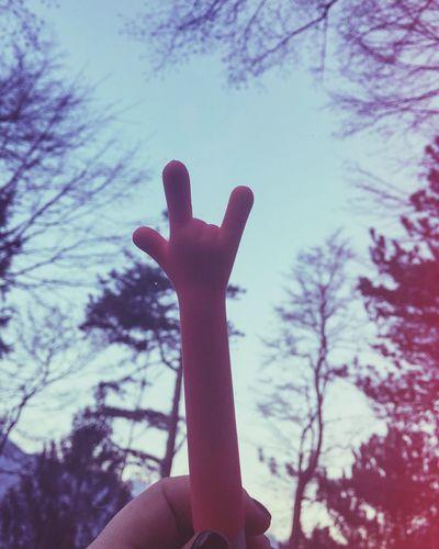 🤘🏼 in nature Simbols