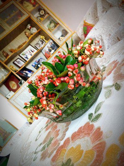 Awesome_shots EyeEm Best Shots Motog3 Motorola_snaps Showpiece Vase Flowers,Plants & Garden Flowerlovers Garden Flowers Lovely