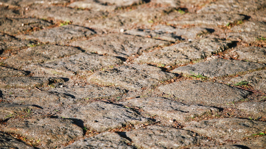 KopfSteinPflaster Backgrounds Close-up Cobblestones Cobblestones Background Texture Solution Cobblestonestreets Cracked Dry Full Frame High Angle View Natural Pattern Nature No People Pattern Rough Selective Focus Solid Street Sunlight Textured