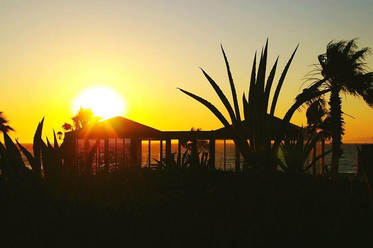Sunset Sea And Sky Holiday Peace Mediterran On The Way EyeEmHolidays Greece Island Contur Rooftop Beautiful Garden The Essence Of Summer 43 Golden Moments Original Experiences