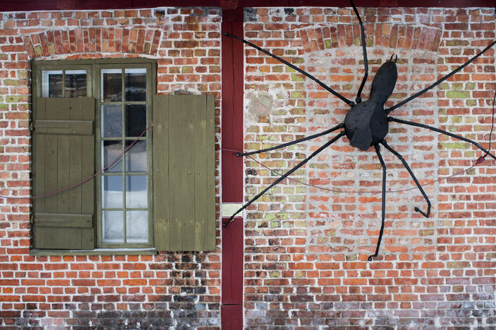 Spider Architecture Brick Wall Building Exterior Built Structure Day Green No People Norway Norway🇳🇴 Outdoors Red Window