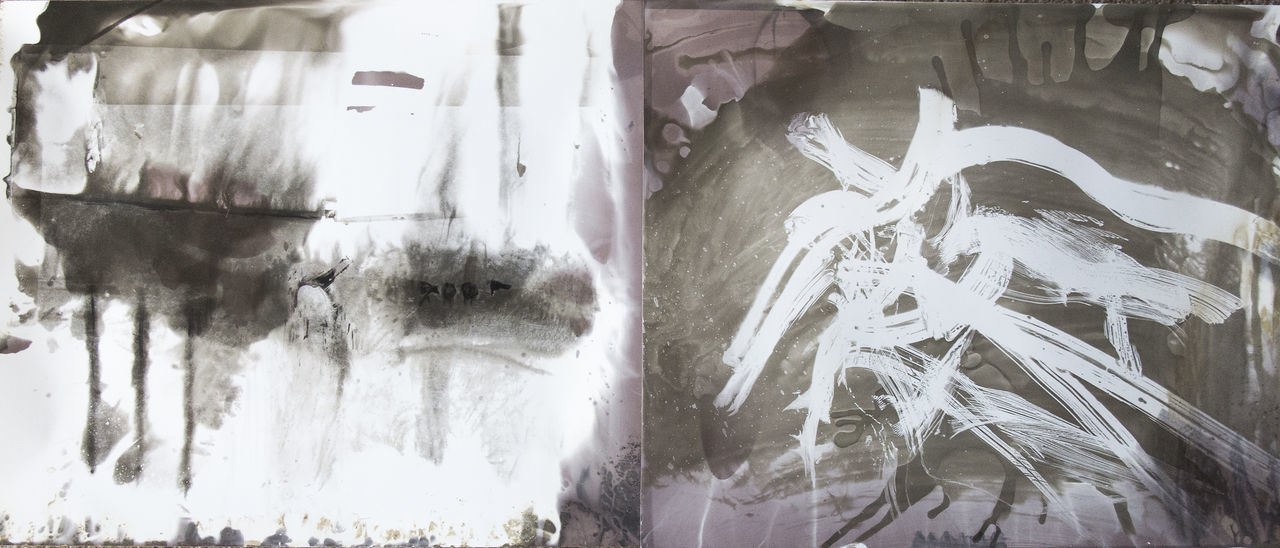 What I Know of Horses Abstract Creativity Darkroom Developer Diptych Expressionist Gelatin Silver Horse Monochrome Photoexpressionism Silver Gelatin Print Monotype Print