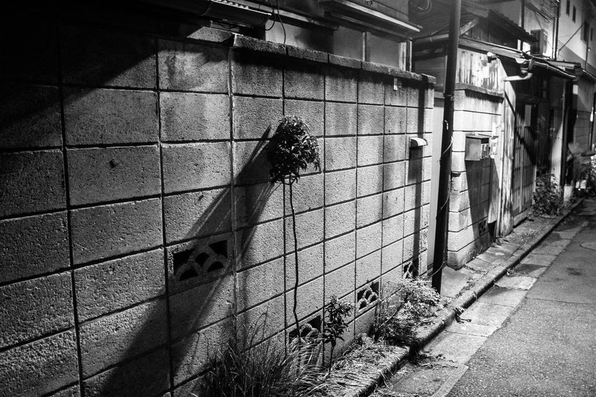 Tokyo street 1 Real People Shadow Built Structure Sunlight Architecture People HUAWEI Photo Award: After Dark Wall - Building Feature City Focus On Shadow