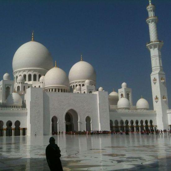 UAE Emirati Emirates Arab Arabic Amazing Abu Dhabi Sheikbinzayed Sheik Bestplace Binzayed Bestone Bin Zayed Gulf Travel Trip Islam Iloveit Mosquebinzayed Masjid Mosque Bestoftheday Bestplace magic gami3 thaqafa inside culture muslim