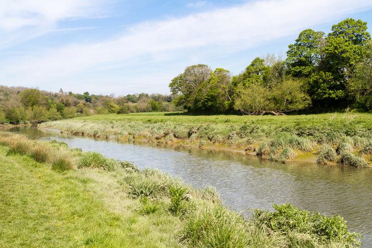 View of stream flowing through grassy field