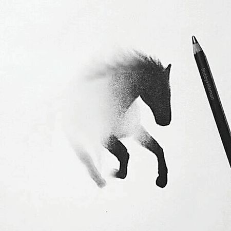 Desenho Cavalo Perfeito First Eyeem Photo