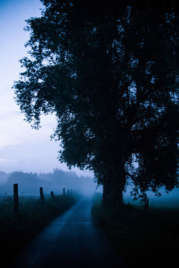 Road amidst silhouette trees on field against sky