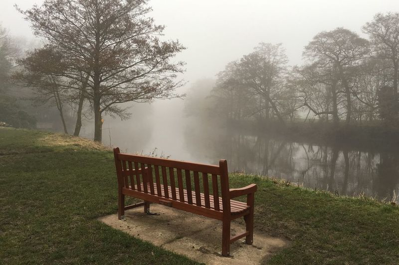 Empty bench by calm lake in foggy weather