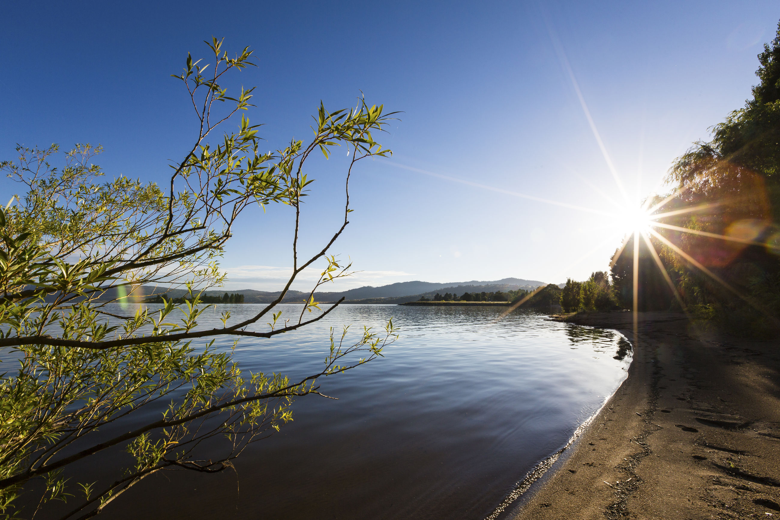 sunlight, beauty in nature, nature, tranquility, lens flare, sun, tranquil scene, water, scenics, no people, tree, lake, outdoors, plant, day, sky, clear sky