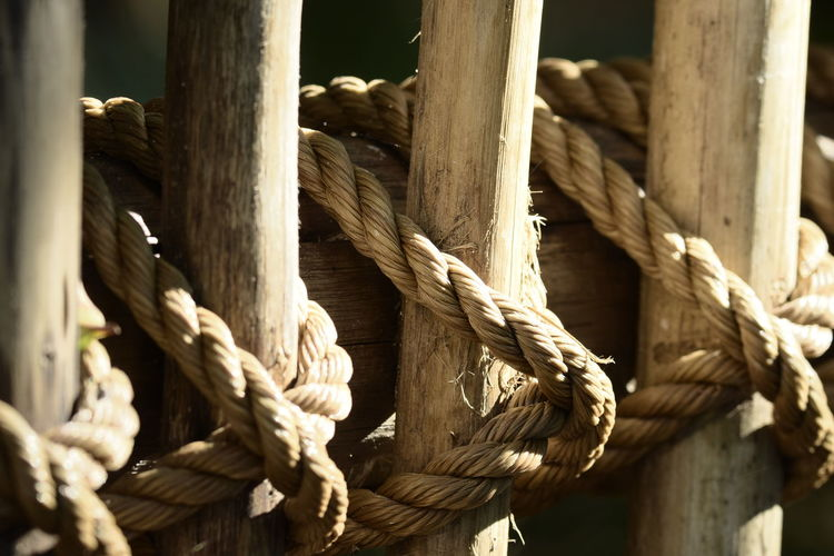 Art Thick Tied Up Wooden Post Wood - Material Tied Knot Strength Rope Tree Close-up Twisted Durability Braided Intertwined Tangled Interlocked Confined Space Cage Birdcage