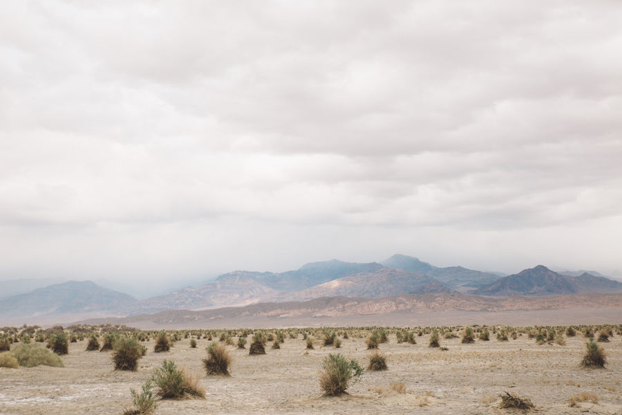 Arid Climate Arid Landscape Beauty In Nature Day Death Valley Death Valley National Park Desert Desert Dunes Grass Landscape Mountain Mountain Range Nature No People Outdoors Sand Storm Scenics Sky Storm Tranquil Scene Tranquility