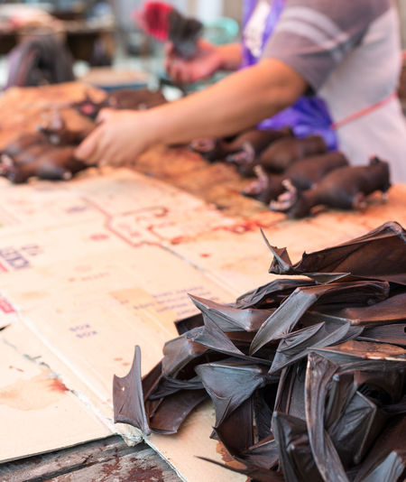 Dead bats for sell in a butcher's stall of indonesian street market. Selective focus on chopped bat wings. Close-up Day Human Body Part Human Hand Leaf Men One Person Outdoors Paper People Real People
