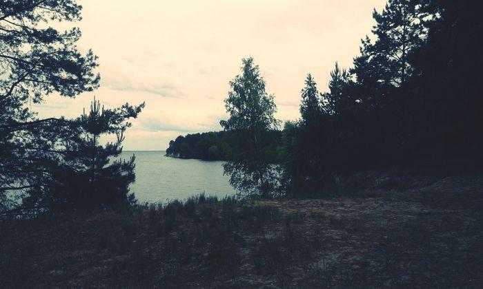 Sukholuch'ye Kiev Sea Forest Lake Lake View Reservoir Evening Ukraine Relaxing Enjoying Life
