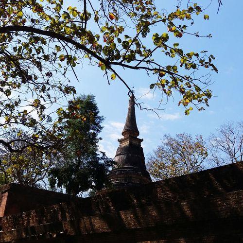 Wat Umong in Chiang Mai Chaingmaithailand Thailand Northofthailand Travel Temple Pagoda Temple - Building Buddhist Temple
