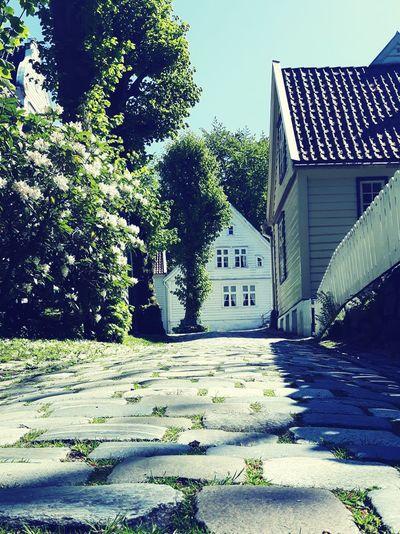 Bergen Sunshine Oldtown Norway Hidden Gems