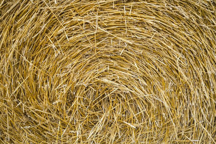 Full Frame Shot Of Hay Bale