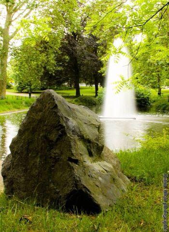 Les parc Water_collection