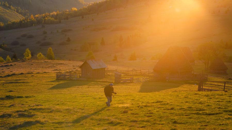 Man walking on field during sunset