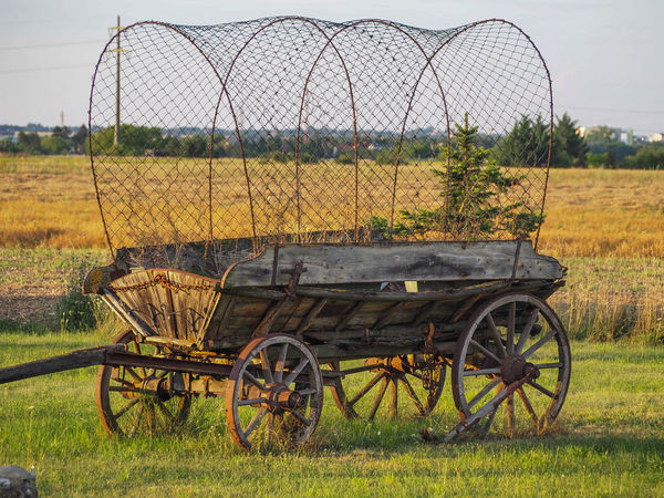 Wooden Cart Afternoon Covered Wagon Late Afternoon Objects Wild West Agriculture Cart Day Environment Farm Grass Land Land Vehicle Landscape Mode Of Transportation Nature No People Old Outdoors Rural Scene Slow Transportation Transportation Wheel Wooden Wheel