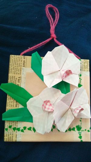Origami Art It Gives To A Mother. Flowers 胡蝶蘭-pholaenopis