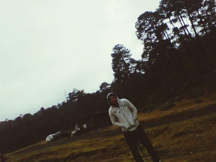 Bosque Frio ⛄❄ Happy :)