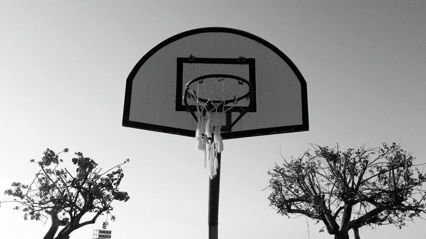 Basketball - Sport Sport Sky Basketball Hoop Day No People Tree Outdoors Nature Arroyo De La Miel Benalmádena, Malaga, Spain Sports Sports Photography Sport In The City Blackandwhite Photography Black And White Collection  Blackandwhitephoto