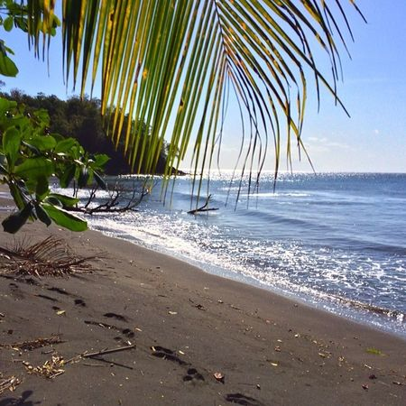 Ilivewhereyouvacation Grenada Blackbay Semisecluded Wu_caribbean Westindies_colors Islandlivity Instapretty Islandlife Iphone5s