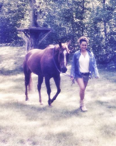 Horse Livestock Country Living Animal Themes Girl Walking Leading Leadrope Shorts Summer