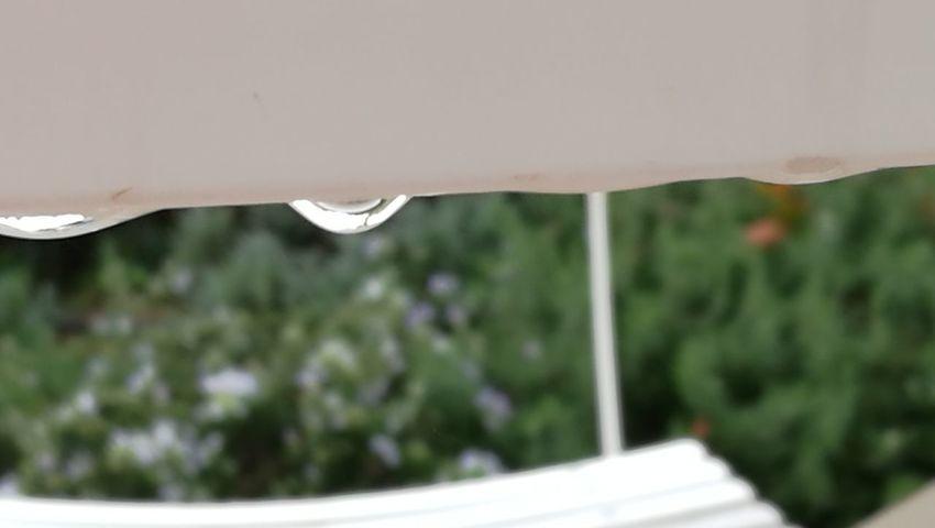 Nature Beauty In Nature Outdoors First Eyeem Photo Pluie D'été Pluie Rain Rainy Days☔ Rain Day Goutte D'eau Goute D'eau