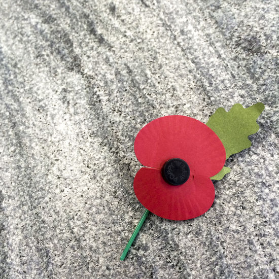 Close up of remembrance day poppy on grey stone background Abstract Appeal Backgrounds Charity Close-up Colorful Creative Creativity Detail Directly Above Grey No People Paper Flower Red Remembrance Remembrance Day Simplicity Still Life Stone Stone Background Symbol Symbolic  Symbolism Textured