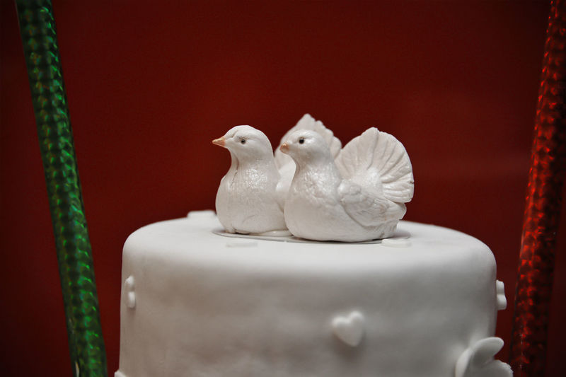 Desert Event Baked Bird Cake Celebration Close-up Decoration Eat Food Indoors  No People Ready-to-eat Still Life Sweet Sweet Food Unhealthy Eating Weeding Cake White Color
