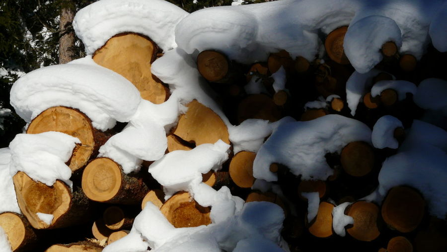 Backgrounds Winter Wonderland Snow Wood Wood - Material Pile Of Wood