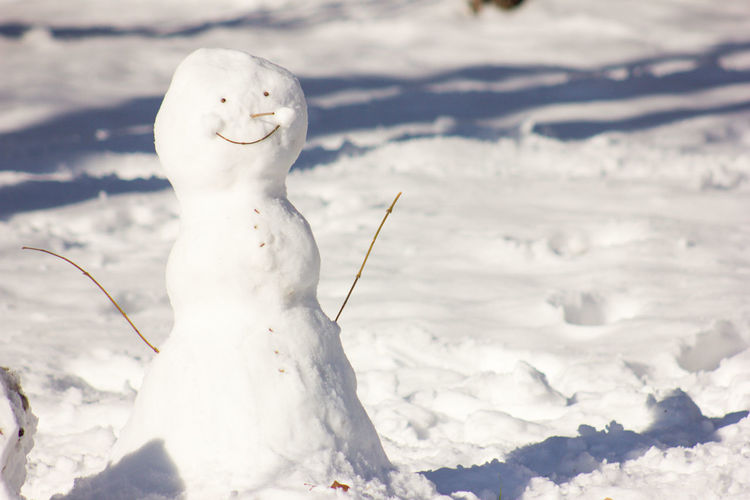 Close-up of snowman on snow covered land