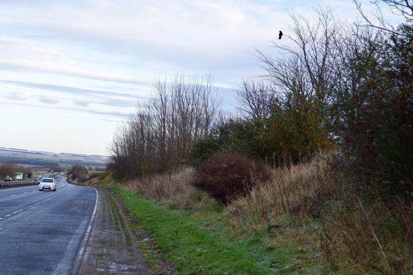 A90, Aberdeen Road