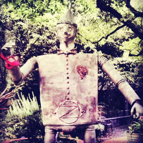 I wish I had a heart Tin Man No Heart
